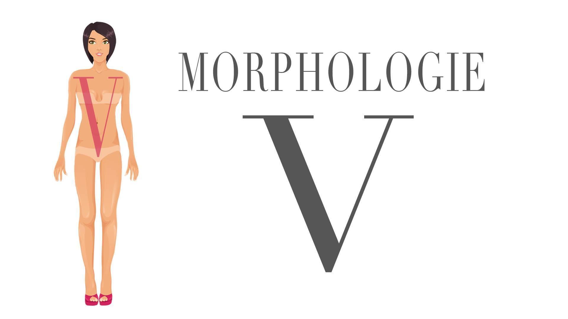 Image de la morphologie en V